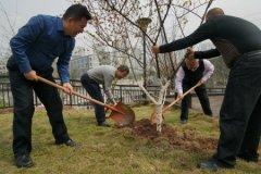 重庆城市管理职业学院积极