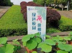 """重庆第二师范学院举办""""绿"""